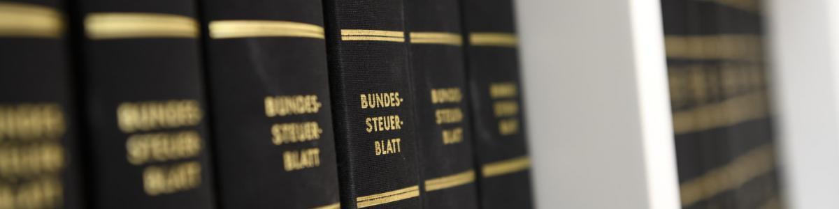 Alisa Schnoor Steuerberaterin cover